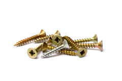 Pile of wood screws Stock Image