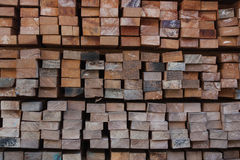 Pile of wood stored in stock. Stock Photos