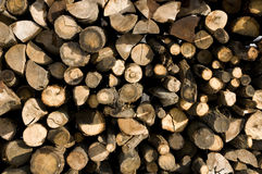 Pile of wood texture Stock Photography
