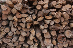 Pile of wood for use as firewood for cooking fuel. Royalty Free Stock Images