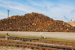 Pile of wooden logs Royalty Free Stock Photos