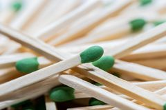 Green headed wooden matches stock images