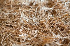 Pile of wooden shavings background Royalty Free Stock Images