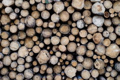 Pile of wooden trunks Royalty Free Stock Photo