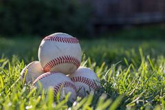 Pile of worn baseballs in the grass, soaking in the afternoon sun stock photo
