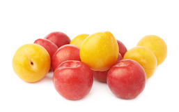 Pile of yellow and red plums Stock Images