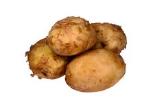 Pile of the young potato isolated on white. Background Stock Image