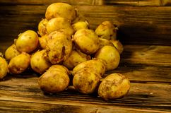 Pile of the young potato on wooden table. Pile of young potato on rustic wooden table Royalty Free Stock Images