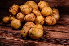 Pile of the young potato on wooden table. Pile of young potato on rustic wooden table Stock Photography
