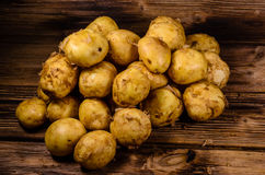 Pile of the young potato on wooden table. Pile of young potato on rustic wooden table Stock Images