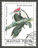 Pileated Woodpecker. Hungary - stamp printed in1985, Memorable Issue, Fauna, Series Birds, Pileated Woodpecker, Dryocopus pileatus Stock Photos