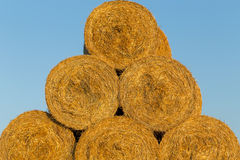 Piled hay bales on a field against blue sky Royalty Free Stock Photo