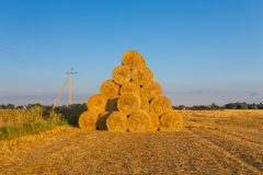 Piled hay bales on a field against blue sky Royalty Free Stock Photography