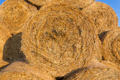 Piled hay bales on a field against blue sky Stock Photos