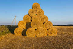 Piled hay bales on a field against blue sky Stock Image