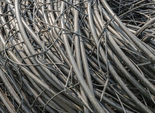 Piled hoses used in horticulture Stock Photo