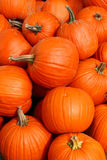 Piled Pumpkins Stock Photos
