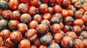 Piled of Red Plums Royalty Free Stock Photos