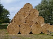 Piled straw bales Stock Image