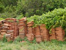 Piled tiles with green plants Stock Photography
