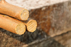 Piled tree trunks on concrete background. Daytime Royalty Free Stock Images