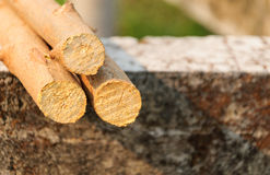 Piled tree trunks on concrete background. Daytime Stock Photo
