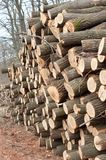 Piled up logs. With blurry background royalty free stock photography
