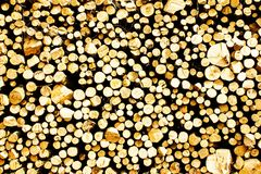 Piled Wood Stock Images