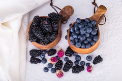 Piles of Blueberries and blackberries in Kuksa Ancient Lapland F Stock Photo