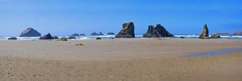 Piles côtières de mer - panorama Photo stock