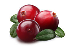 Piles of cranberries, paths Stock Photography