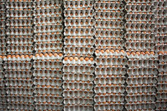 Piles d'oeufs bruns Photo libre de droits