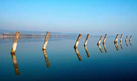 Piles dans le lac Balaton photos libres de droits