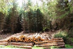 Piles de bois de construction Images stock