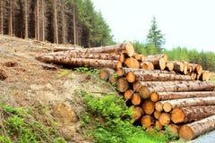 Piles de bois de construction Photo stock