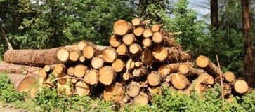 Piles de bois de construction Images libres de droits