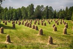 Piles de foin Image libre de droits