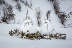 Piles de foin couvertes dans la neige Photo stock