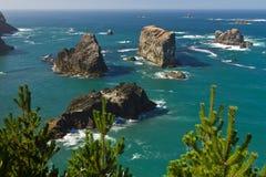 Piles de mer, côte de l'Orégon Images stock