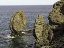 Piles de mer sur la traînée de Skerwink photographie stock libre de droits