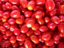 Piles de mini tomates fraîches Images libres de droits