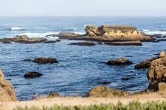 Piles des ordures formant des récifs photo libre de droits