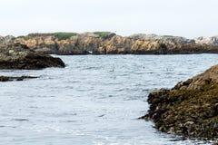 Piles des ordures formant des récifs photographie stock libre de droits