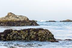 Piles des ordures formant des récifs photographie stock