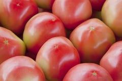 Piles des tomates Photographie stock