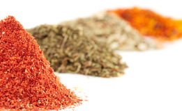 Piles of different spices Stock Images