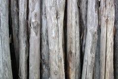 Piles of dry wood Stock Photo