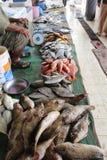 Piles du poisson frais chez le Muttrah Souq photo stock