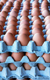 Piles eggs Royalty Free Stock Photos