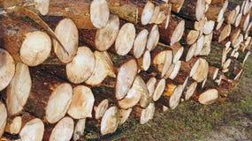 Piles en bois Photographie stock libre de droits